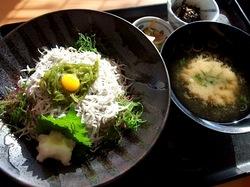 しらす&生しらす料理快飛(かっとび)@茅ヶ崎の釜揚げしらす丼