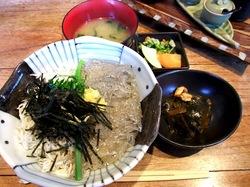 湘南江ノ島腰越しらすやの生しらすと釜揚げしらす二色丼