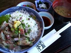海が見える江ノ島の食事処江之島亭の鯵たたき・しらす二色丼
