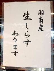 海が見える江ノ島の食事処江之島亭の生しらすあります