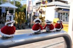 江ノ電江ノ島駅名物「江ノ電スズメ」がクリスマス衣装に
