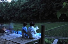 石川丸山八戸ほたるの里のホタル