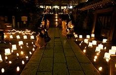 湘南・鎌倉の神輿や盆踊りなど夏祭りピックアップ2014年龍口寺灯籠