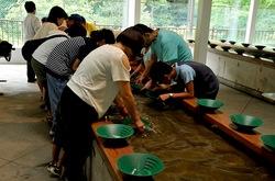 新潟県佐渡島の砂金西三川ゴールドパークの砂金初級コース