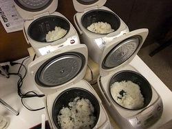 小田原漁港早川の港の台所なみのご飯セット
