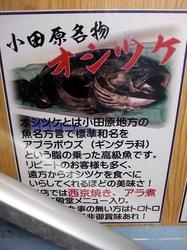 小田原漁港早川の港の台所なみのオシツケ