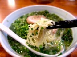 藤沢市辻堂鶏白湯ラーメンまる玉の細ちぢれ麺