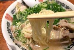 藤沢市湘南台の京都ラーメン幸樹の細ストレート麺
