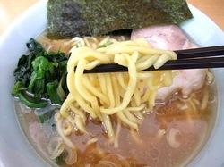 藤沢市湘南台の家系ラーメン栄家の太ちぢれ麺