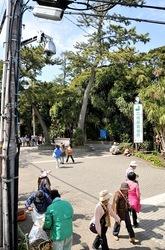 パソコン遠隔操作ウイルス事件江ノ島の地域ネコ「裕(ゆたかくん)」の防犯カメラ