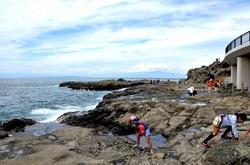 江ノ島裏の岩場