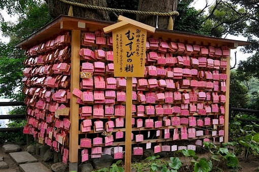 湘南藤沢江島神社の七夕飾り