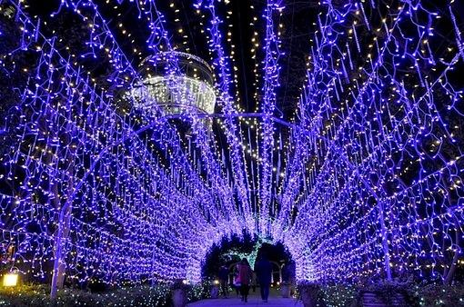 湘南の宝石江ノ島シーキャンドルライトアップ2014