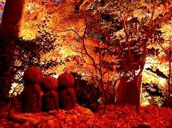 鎌倉紅葉スポット長谷の長谷寺ライトアップと良縁地蔵