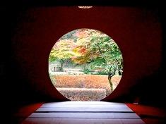 鎌倉の紅葉スポット北鎌倉の明月院