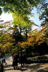 北鎌倉の紅葉散策円覚寺の山門前