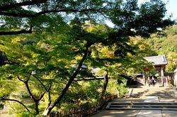 北鎌倉の紅葉散策円覚寺の舎利殿前
