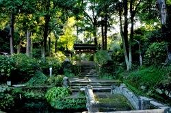 北鎌倉の紅葉散策浄智寺の山門前
