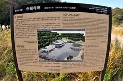 鎌倉紅葉散策の永福寺跡