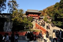 鎌倉紅葉散策の鶴岡八幡宮