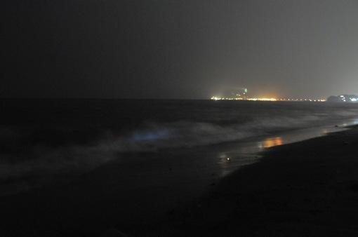 湘南鎌倉の七里ガ浜の海から見た夜光虫2014