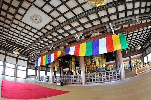 藤沢桜花チェック2014遊行寺(清浄光寺)の本堂