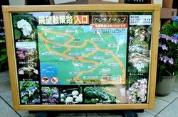 鎌倉長谷寺の眺望散策路