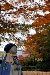 北鎌倉明月院菖蒲畑の紅葉と青地像