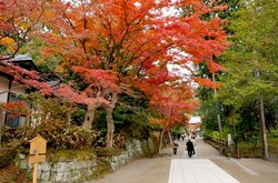 北鎌倉円覚寺の紅葉