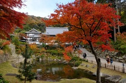北鎌倉円覚寺妙香池の紅葉