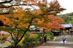北鎌倉円覚寺の妙香池と舎利殿前の紅葉