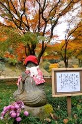 北鎌倉明月院の赤地蔵と紅葉