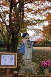 北鎌倉明月院の青地蔵と紅葉