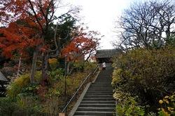 北鎌倉東慶寺山門の紅葉