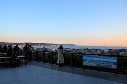鎌倉長谷寺の紅葉と見晴台からの海