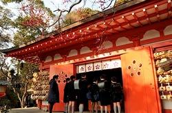 鎌倉荏柄天神社の紅梅が開花2014