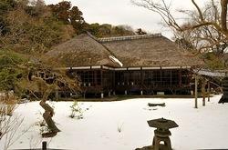 北鎌倉浄智寺の庫裡前の庭園と雪と梅花