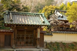 鎌倉英勝寺の梅花チェック2014