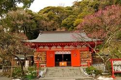 鎌倉荏柄天神社の梅花チェック2014
