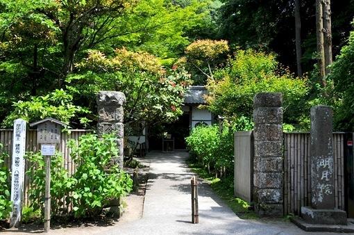鎌倉新緑チェック2014明月院@北鎌倉の山門前