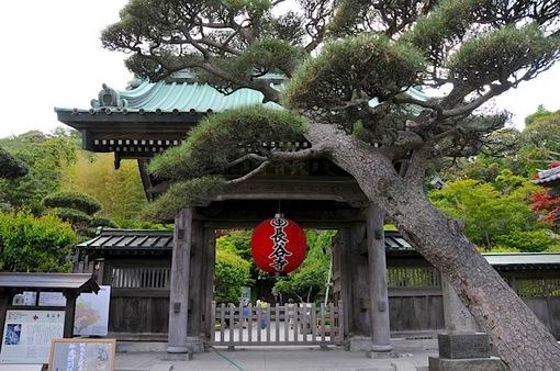 鎌倉新緑チェック2014長谷の長谷寺の山門