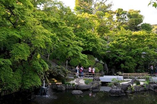 鎌倉新緑チェック2014長谷の長谷寺の放生池