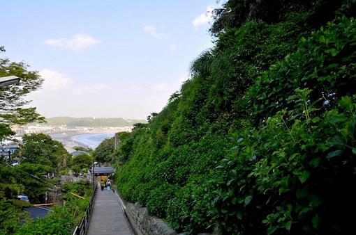 鎌倉新緑チェック2014極楽寺の成就院の参道と海