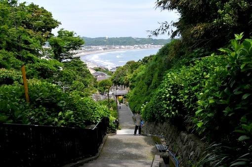 鎌倉紫陽花(あじさい)チェック2014極楽寺の成就院