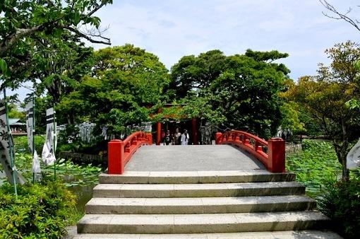 鎌倉鶴岡八幡宮境内の新緑スポット源氏池から旗上弁財天社