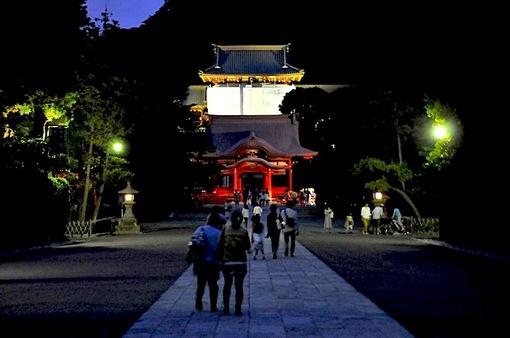 鎌倉鶴岡八幡宮のホタルまつり2014「蛍放生祭ほたるほうじょうさい」