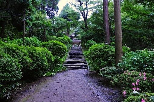 鎌倉紫陽花(あじさい)チェック2014北鎌倉浄智寺