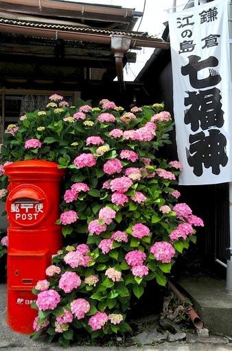 鎌倉紫陽花(あじさい)チェック2014極楽寺&長谷の御霊神社力餅家前のポスト