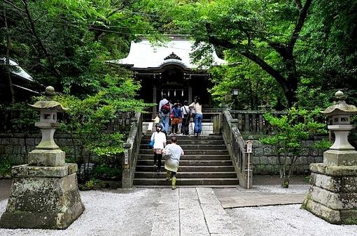 鎌倉紫陽花(あじさい)チェック2014極楽寺&長谷の御霊神社