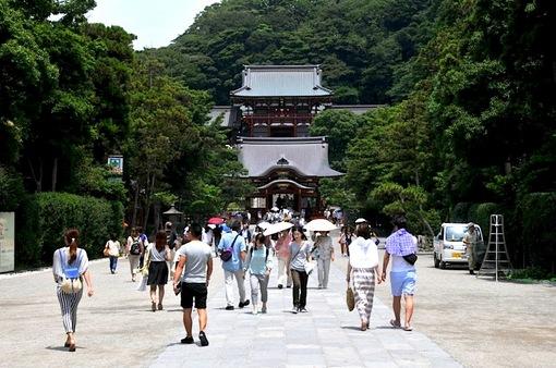 夏の鶴岡八幡宮のちょっとラッキーな風景